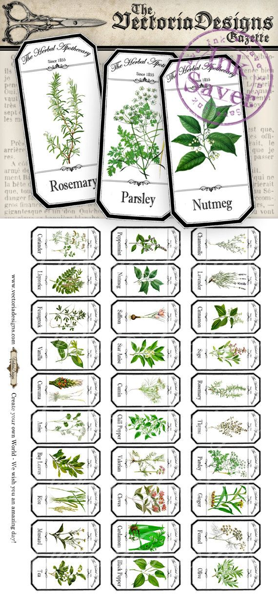 Mini Herbal Apothecary Labels Save Ink von VectoriaDesigns