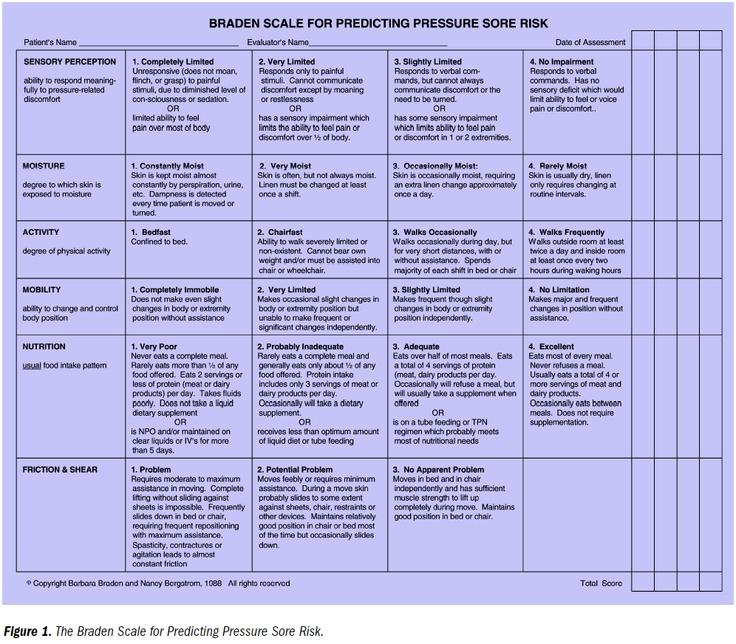 Braden Skala Ebook Download
