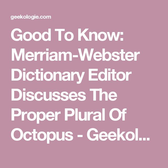 The 25+ best Octopus plural ideas on Pinterest | Plural of octopus ...