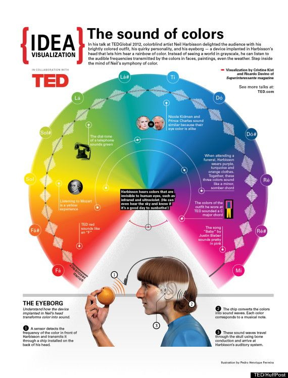 This week's TEDWeekends theme is 'Hacking Our Senses,' and below you will find a visual representation of colorblind artist Neil Harbisson's talk on how he can 'hear' colors.