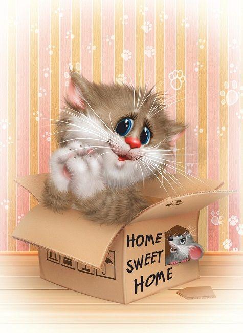 Картинки красивые, кошки мышки открытка