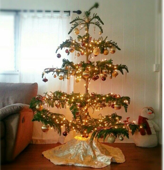 Hawaiian Norfolk Pine Christmas Tree Decor I Adore