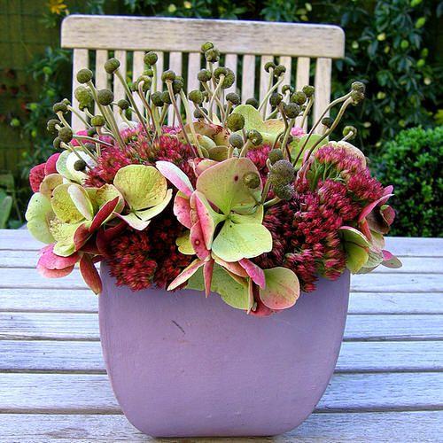 Herfst bloemschikken met bloemen en zaden - herfst bloemschikken met sedum, herfstanemoon en hortensia