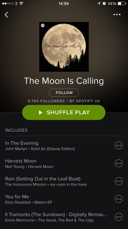 Weirdly Specific Spotify Playlists