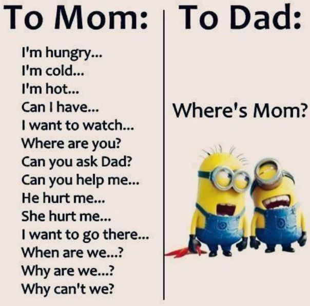 Hilarious Memes Funny Quotes Funny Minion Quotes Funny Minion Memes