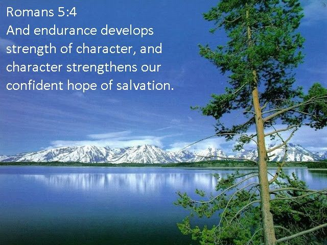 The 25 Best Bible Verses About Nature Ideas On Pinterest