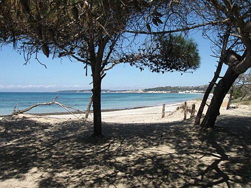 Appartamento a Rivabella di Gallipoli a soli 20 metri dalla spiaggia