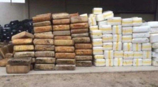Decomisan 41,6 toneladas de marihuana en estado mexicano de Baja California