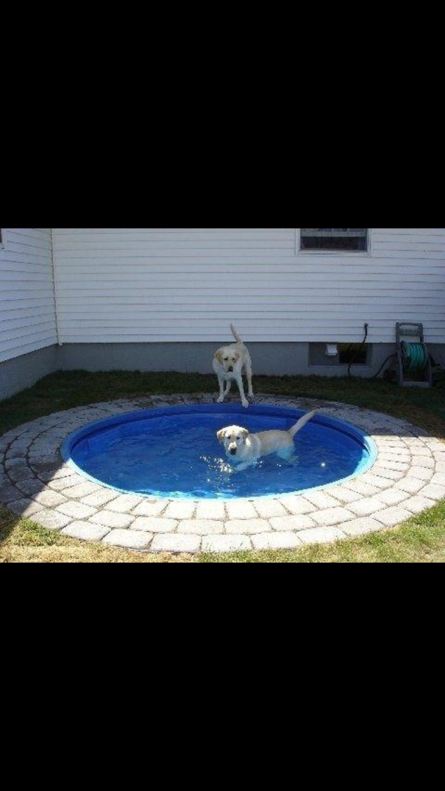 This is for Nancy, your back yard is not complete yet :0) Underground kiddie pool dog pool or a fire pit!!!