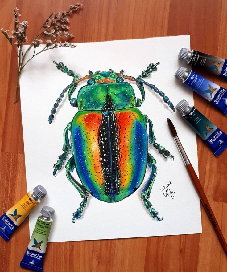 Iridescent beetle by @alexandra.zeres.art on Instagram, using watercolors and colored pencils.