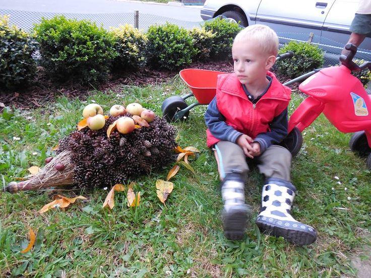 Se synem jsme vyrobili ježečka jako podzimní dekoraci před domek a vydržel tam celou zimu. Tělo je ze suché trávy, kterou jsme natrhali na louce. Stažené drátem. Šišky posbírané po různu. Oči z kaštanů a nos z makovice. Ještě jsme mu na záda přidali jablíčka a listí. Synův nápad.