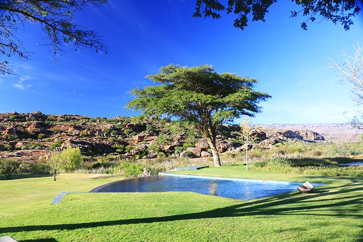 A group of travellers head to Bushmans Kloof Wilderness Reserve & Wellness Retreat, at the foothills of the Cederberg Mountains, where wildlife roam freely.