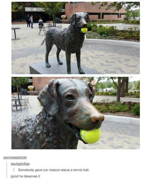 He's a happy dog