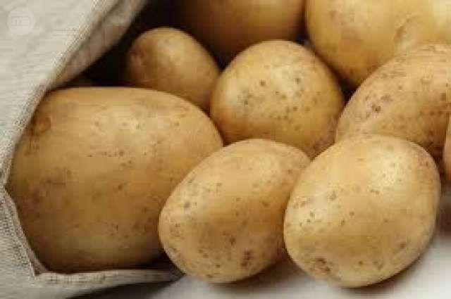 . Busco patatas en grandes cantidades directo del agricultor,nueva,agria,amarilla,blanca,etc..Buscamos mejor precio/calidad en sacos de 20kg y big bags de 1000kg Compramos contado,empresa solvente,exigimos,seriedad y profesionalidad
