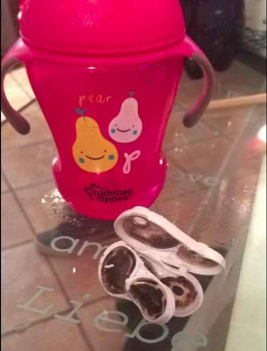 All of the parents reported washing the cup numerous times, both by hand and in the dishwasher. But the mold still built up. On Facebook, L'Hostie's photos were shared over 45,000 times and Powell's over 85,000 times.