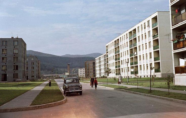 Kilián-dél, Benedek Elek utca a Gagarin utca felé nézve. 1965