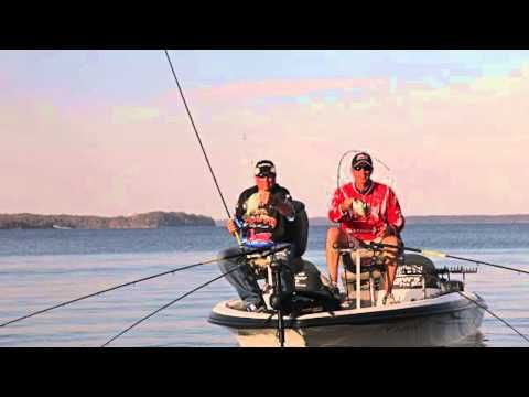 A Quick Insight Into Crappie Fishing