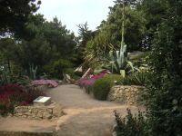 Jardin Georges-Delaselle, Île-de-Batz [Finistère]