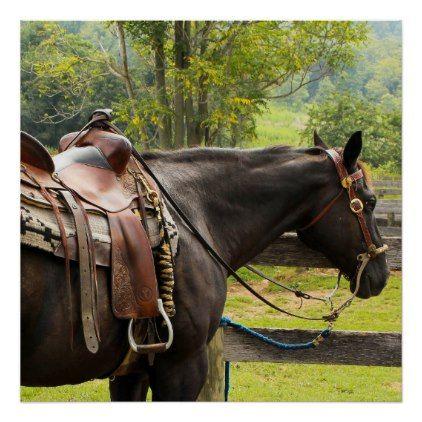 Western saddle horse poster - horse animal horses riding freedom