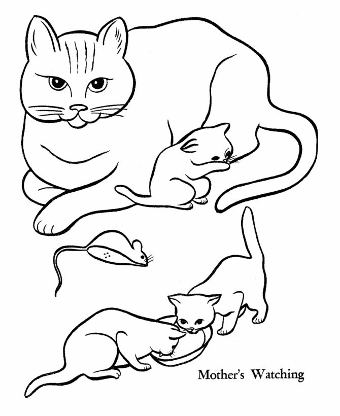 pet cat coloring page mother cat and kittens from honkingdonkeycom http