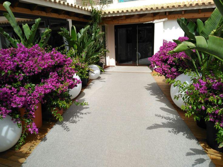 Hotel tahiti Formentera