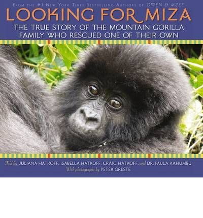 In a magical place called the Congo, in the beautiful forests and jungles of Virunga National Park, lives a young female mountain gorilla named Miza. She was just like any other baby gorilla, riding on her mother's back, playing, taking naps. Then, one day, when Miza and her mother were out searching for food, Miza's mother disappeared, leaving her baby alone and frightened. Miza's father, a fierce silverback named Kabirizi and the leader of Virunga's largest family of mountain gorillas, set…