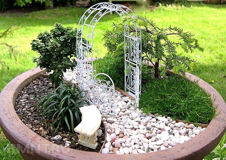 Мини-сад в горшке: варианты обустройства композиции