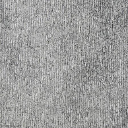 Papel crespón Plateado - 250 x 50 cm - Fotografía n°2