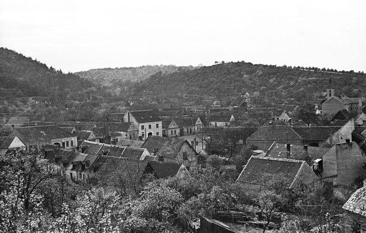 Kertváros. Sopronbánfalvi látkép a Pálos-karmelita templom és kolostor felől nézve. 1955