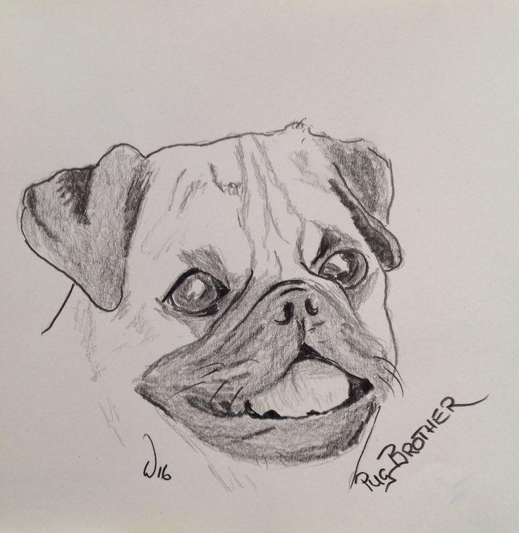 Pug Brother