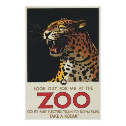 Leopard at the Zoo Vintage Poster - animal gift ideas animals and pets diy customize