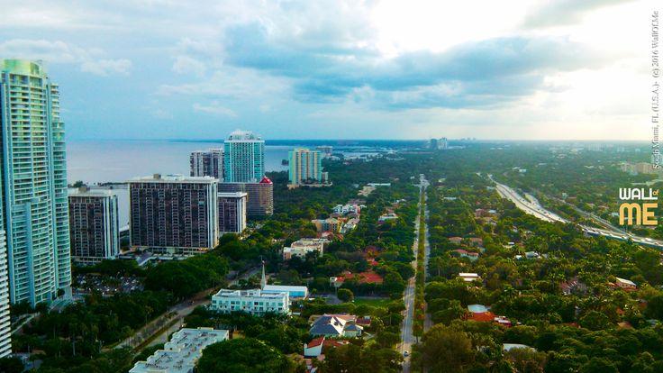 2016, week 48. South Miami, Florida (U.S.A.).  Picture taken: 2015, 10