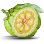 Top 5 Suplementos Naturales para Perder Peso / Top 5 Natural Fat Loss Supplements