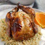 http://cookingwithcurls.com/2017/07/03/orange-glazed-cornish-game-hens/