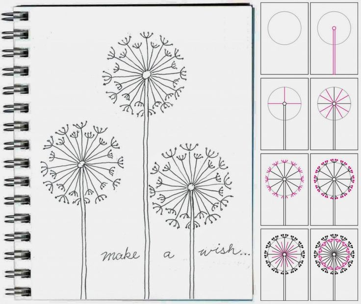 How to draw a dandelion. #artjournal