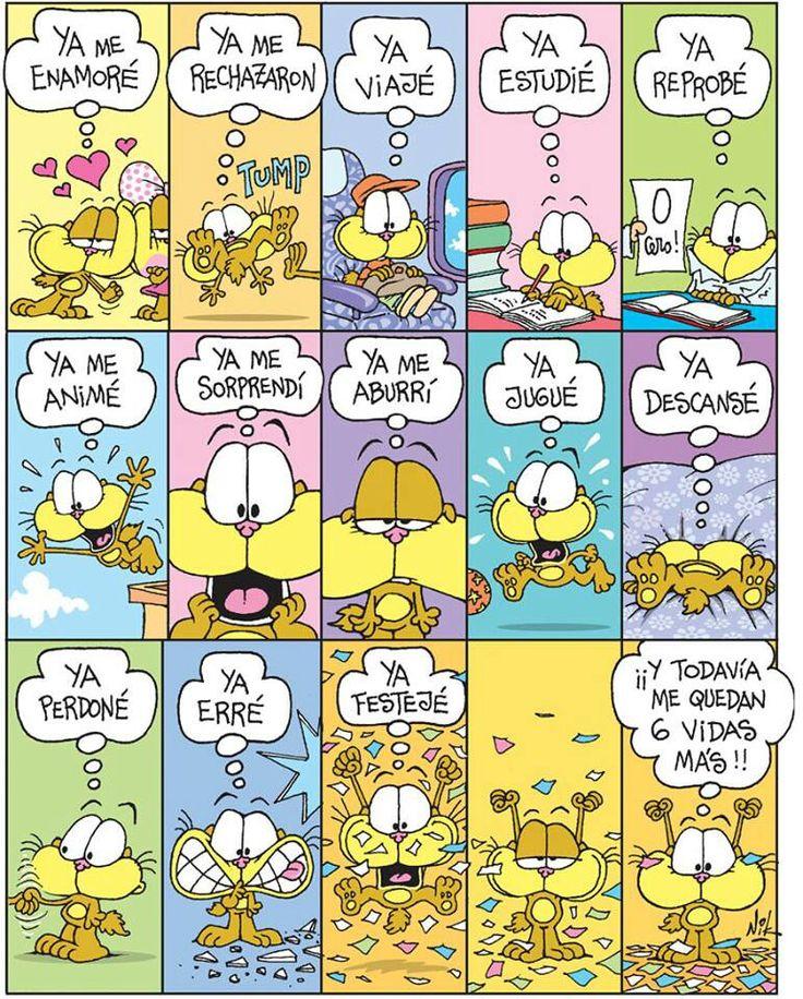 Gaturro-- #pretérito #indefinido