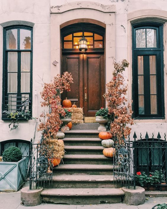 NYC brownstones in the fall. BEST EVER.