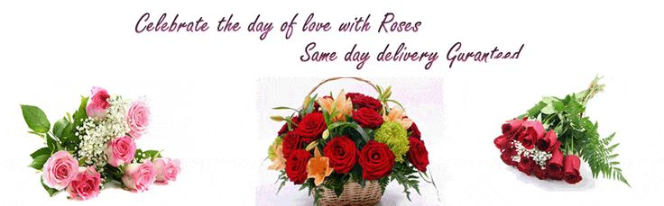 Send flowers to Mysore from our gifting portal, shop online for birthday cakes gifts, chocolates, sweets, same day delivery with leading gift shop in Mysore