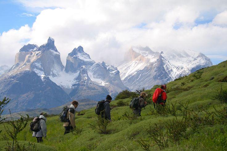 #Patagonia se destaca por la cantidad de circuitos de #trekking que se pueden encontrar a lo largo de sus diferentes #paisajes. Descubra lo mejor de los #destinos más elegidos por los amantes de esta actividad, en este itinerario. #Calafate #TorresDelPaine #Chalten #bespokeTrips #ViajesAmedida #AcrossArgentina #adventure #aventuar #outdoor #vacation #vacaciones #voyage #viagems #viaggio #viajar #travel