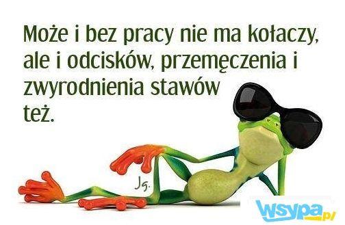 http://www.wsypa.pl/1160/bez_pracy_nie_ma_kolaczy.html