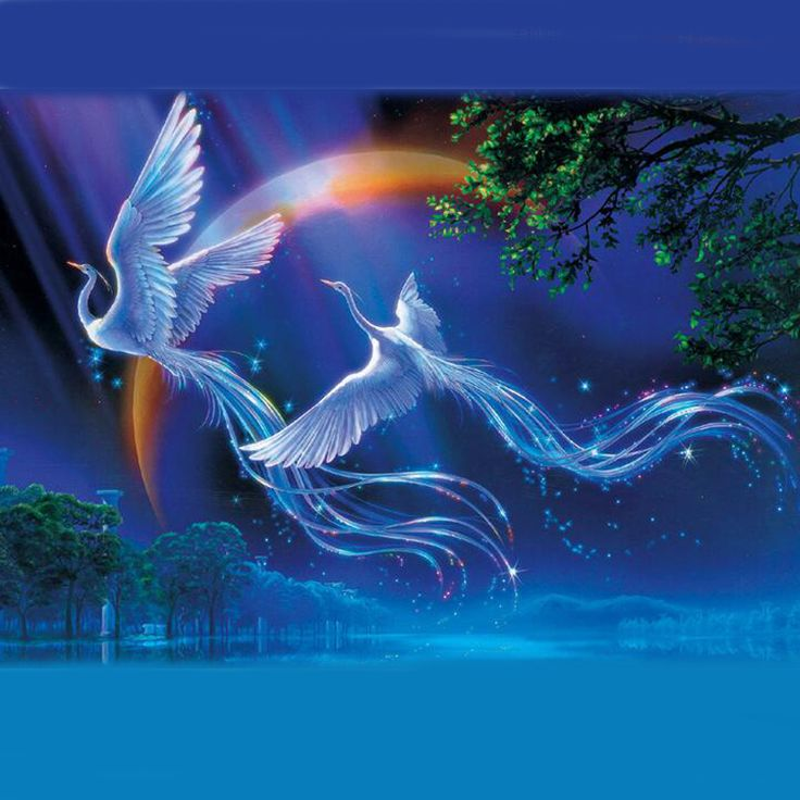 Noctilucent Jigsaw Puzzle 1000 Pieces // Price: $35.95 & FREE Shipping //  We accept PayPal and Credit Cards.    #gameronboard #boardgame #cardgame #game #puzzle #maze #toys #chess #dice #kendama #playingcards #tilegames