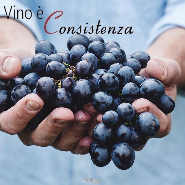 Il vino è corpo, il vino è forma, il vino è consistenza. E per voi? #ParoleDiVino