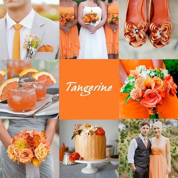 In questi ultimi giorni stiamo tenendo gli occhi particolarmente aperti su quelli che saranno i trend del settore wedding per l'anno 2015. Abbiamo c'è parlato del colore dell'anno, il Marsala …