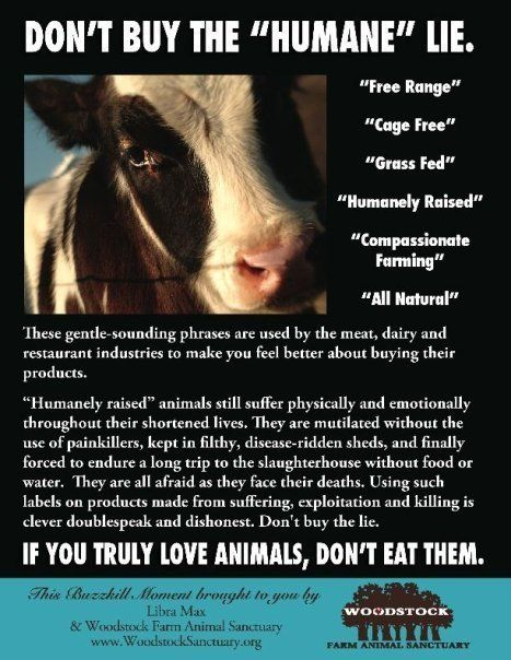 Don't buy the humane lie - Free range, cage free, grass fed, humanely raised, compassionate farming, all natural - If you truly love animals, don't eat them. © Woodstock Sanctuary http://woodstocksanctuary.org/