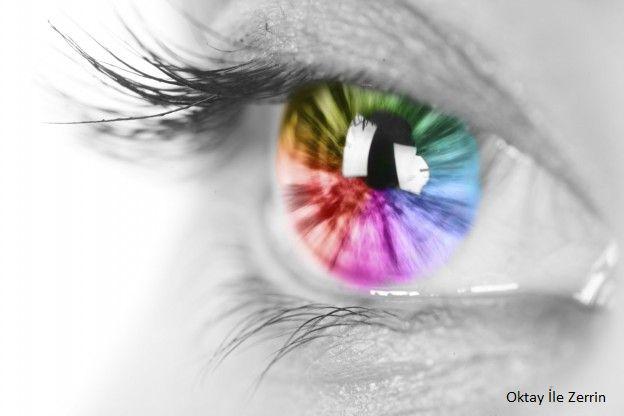 Renk Körlüğü Nedir? Test Edin...