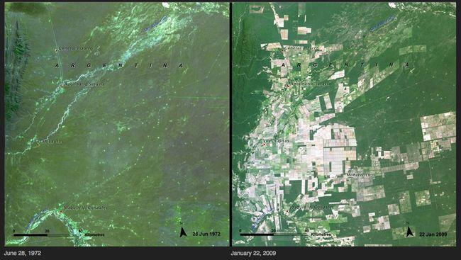 16.) Deforestation - Argentina