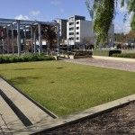 Bowden - Renewal SA Bioretention and Infiltration Water Sensitive Urban Design WSUD