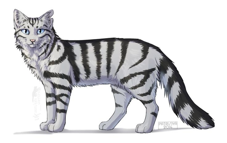 Warriors Cats - Bumblestripe by Cat-Patrisiya on DeviantArt