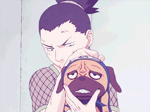 Shikamaru and Pakkun, this is , just great