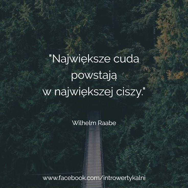 #introwertyk #introwertycy #introwertykalni #introwertyczka #introwertyczna #introwertyczny #introwertycznie #introwertyzm #introwersja #introvert #introverts #introversion #jestemintrowertykiem #cuda #cisza #spokoj #samotnia #samnasam #cytat #cytaty #wilhelm #raabe #wilhelmraabe